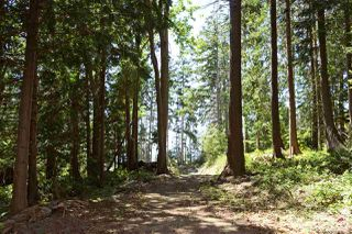 Photo 4: Lot 4 WAKEFIELD Road in Sechelt: Sechelt District Land for sale (Sunshine Coast)  : MLS®# R2428424