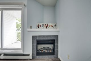 Photo 16: 306 11446 40 Avenue in Edmonton: Zone 16 Condo for sale : MLS®# E4199013
