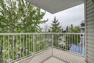 Photo 15: 306 11446 40 Avenue in Edmonton: Zone 16 Condo for sale : MLS®# E4199013