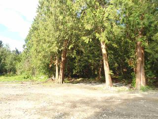 Photo 3: 26215 84 Avenue in Langley: County Line Glen Valley Land for sale : MLS®# R2472630