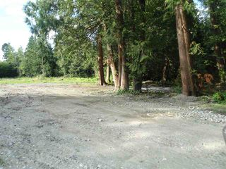 Photo 6: 26215 84 Avenue in Langley: County Line Glen Valley Land for sale : MLS®# R2472630