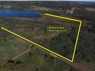 Photo 1: 36 Acres Twp Rd 572 & RR 234: Rural Sturgeon County Rural Land/Vacant Lot for sale : MLS®# E4213234