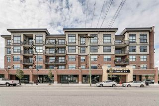 """Main Photo: 209 11893 227 Street in Maple Ridge: East Central Condo for sale in """"BRICKWATER"""" : MLS®# R2402244"""