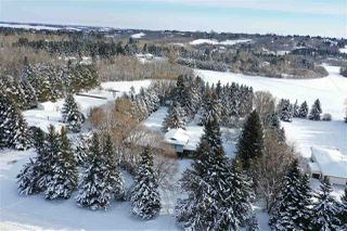 Photo 32: 75 SHULTZ Drive: Rural Sturgeon County House for sale : MLS®# E4177171
