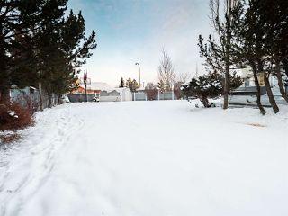 Photo 49: 1716 BEARSPAW Drive E in Edmonton: Zone 16 House for sale : MLS®# E4182661