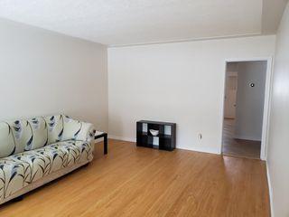 Photo 11: 11849 54 Street in Edmonton: Zone 06 House for sale : MLS®# E4195045