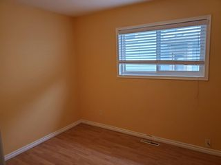 Photo 22: 11849 54 Street in Edmonton: Zone 06 House for sale : MLS®# E4195045