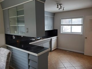 Photo 9: 11849 54 Street in Edmonton: Zone 06 House for sale : MLS®# E4195045