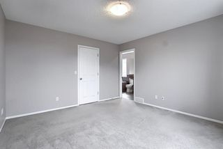 Photo 24: 9 CRANFORD Place SE in Calgary: Cranston Detached for sale : MLS®# A1035562
