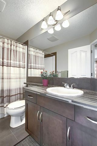 Photo 33: 9 CRANFORD Place SE in Calgary: Cranston Detached for sale : MLS®# A1035562