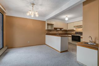 Photo 8: 204 333 2 Avenue NE in Calgary: Crescent Heights Apartment for sale : MLS®# A1039174