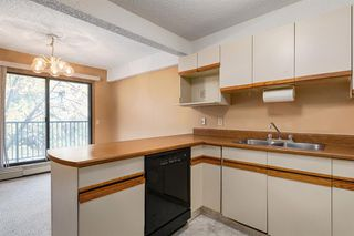 Photo 12: 204 333 2 Avenue NE in Calgary: Crescent Heights Apartment for sale : MLS®# A1039174
