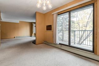 Photo 13: 204 333 2 Avenue NE in Calgary: Crescent Heights Apartment for sale : MLS®# A1039174