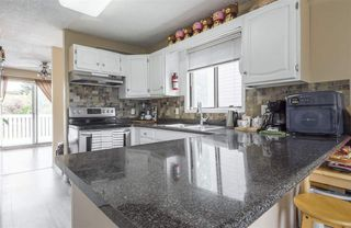 Photo 16: 2035 49A Street in Edmonton: Zone 29 House for sale : MLS®# E4166145