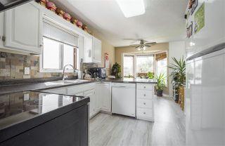Photo 12: 2035 49A Street in Edmonton: Zone 29 House for sale : MLS®# E4166145