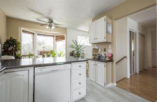 Photo 13: 2035 49A Street in Edmonton: Zone 29 House for sale : MLS®# E4166145