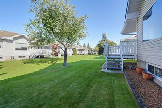 Photo 5: 24 9704 165 Street in Edmonton: Zone 22 House Half Duplex for sale : MLS®# E4176198