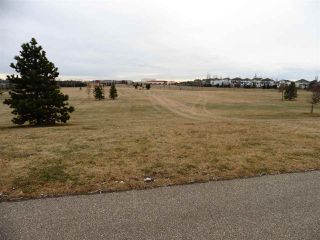 Photo 33: 2352 TAYLOR Close NW in Edmonton: Zone 14 House for sale : MLS®# E4178816
