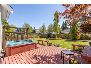 Photo 33: 21990 46 Avenue in Langley: Murrayville House for sale : MLS®# R2455047