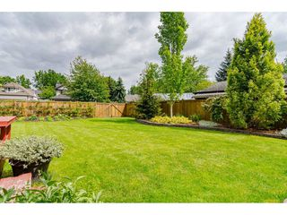 Photo 19: 21990 46 Avenue in Langley: Murrayville House for sale : MLS®# R2455047
