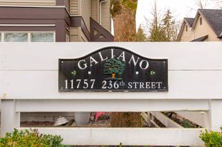 Photo 19: 81 11757 236 STREET in Maple Ridge: Cottonwood MR Townhouse for sale : MLS®# R2426657