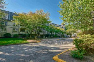 """Photo 14: 124 98 LAVAL Street in Coquitlam: Maillardville Condo for sale in """"LE CHATEAU II"""" : MLS®# R2496401"""