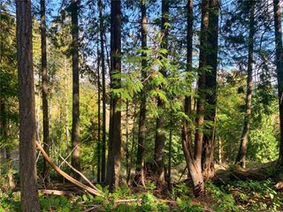 Photo 12: 0 Spruce Ave in : Isl Gabriola Island Land for sale (Islands)  : MLS®# 858022