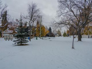 Photo 48: 448 30 Avenue NE in Calgary: Winston Heights/Mountview Detached for sale : MLS®# A1043755