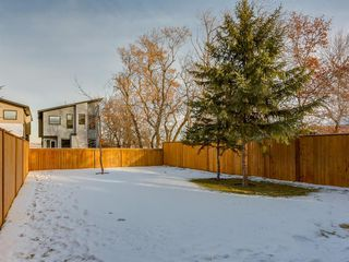 Photo 46: 448 30 Avenue NE in Calgary: Winston Heights/Mountview Detached for sale : MLS®# A1043755