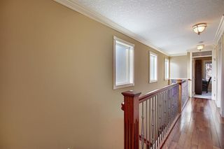 Photo 24: 1921 26 Avenue SW in Calgary: South Calgary Detached for sale : MLS®# A1057718