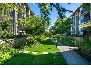 "Photo 15: 215 21009 56 Avenue in Langley: Salmon River Condo for sale in ""Cornerstone"" : MLS®# R2414162"