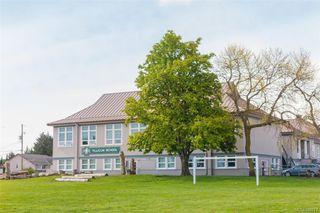 Photo 37: 3143 Irma St in Victoria: Vi Burnside House for sale : MLS®# 844271