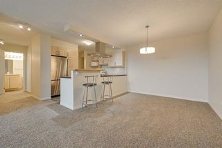 Photo 6: 1002 10545 Saskatchewan Drive in Edmonton: Zone 15 Condo for sale : MLS®# E4217960