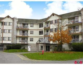 "Photo 1: 116 5710 201ST Street in Langley: Langley City Condo for sale in ""White Oaks"" : MLS®# F2728346"