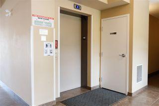 Photo 25: 303 8730 82 Avenue in Edmonton: Zone 18 Condo for sale : MLS®# E4199033