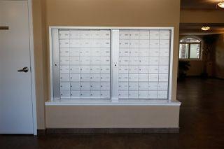 Photo 30: 303 8730 82 Avenue in Edmonton: Zone 18 Condo for sale : MLS®# E4199033