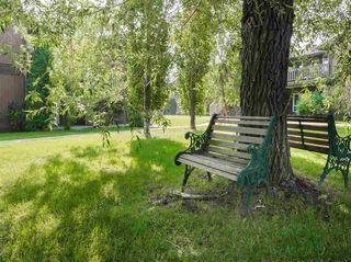 Photo 24: 5792 172 Street in Edmonton: Zone 20 Carriage for sale : MLS®# E4199756