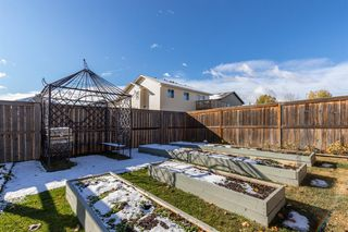 Photo 40: 11 MacKenzie Way: Carstairs Detached for sale : MLS®# A1041763