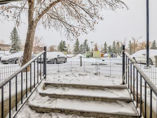 Photo 12: 3108 80 Glamis Drive SW in Calgary: Glamorgan Apartment for sale : MLS®# A1057086