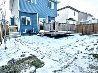 Photo 18: 48 Hewitt Circle: Spruce Grove House for sale : MLS®# E4179363