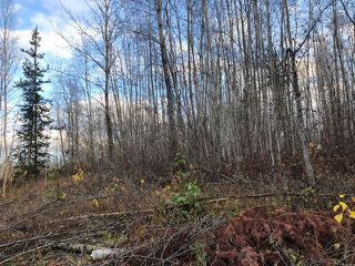 "Photo 4: LT 15- 20 22ND Avenue: Hazelton Land for sale in ""SOUTH HAZELTON"" (Smithers And Area (Zone 54))  : MLS®# R2447716"