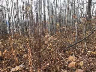 "Photo 3: LT 15- 20 22ND Avenue: Hazelton Land for sale in ""SOUTH HAZELTON"" (Smithers And Area (Zone 54))  : MLS®# R2447716"