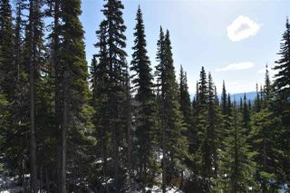 "Photo 3: 192 ALPINE Way in Smithers: Smithers - Rural Land for sale in ""Hudson Bay Mountain Estates"" (Smithers And Area (Zone 54))  : MLS®# R2453889"