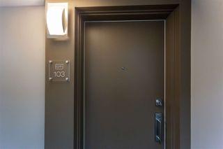 Photo 15: 103 11325 103 Avenue in Edmonton: Zone 12 Condo for sale : MLS®# E4197480