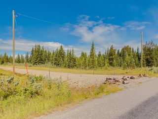 Photo 16: 20 34364 RANGE ROAD 42: Rural Mountain View County Land for sale : MLS®# A1017805