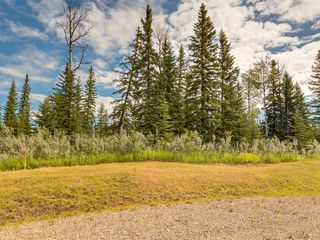 Photo 3: 20 34364 RANGE ROAD 42: Rural Mountain View County Land for sale : MLS®# A1017805