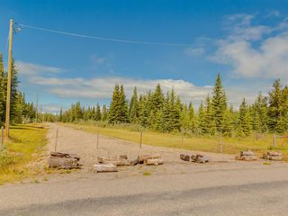 Photo 17: 20 34364 RANGE ROAD 42: Rural Mountain View County Land for sale : MLS®# A1017805