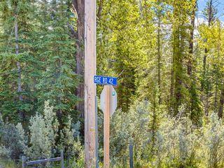 Photo 25: 20 34364 RANGE ROAD 42: Rural Mountain View County Land for sale : MLS®# A1017805