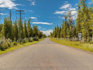 Photo 24: 20 34364 RANGE ROAD 42: Rural Mountain View County Land for sale : MLS®# A1017805