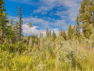 Photo 8: 20 34364 RANGE ROAD 42: Rural Mountain View County Land for sale : MLS®# A1017805